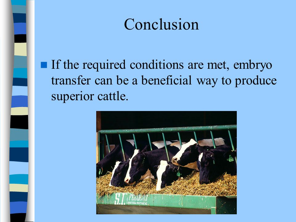 Conclusion If the required conditions are met, embryo transfer can be a beneficial way to produce superior cattle.