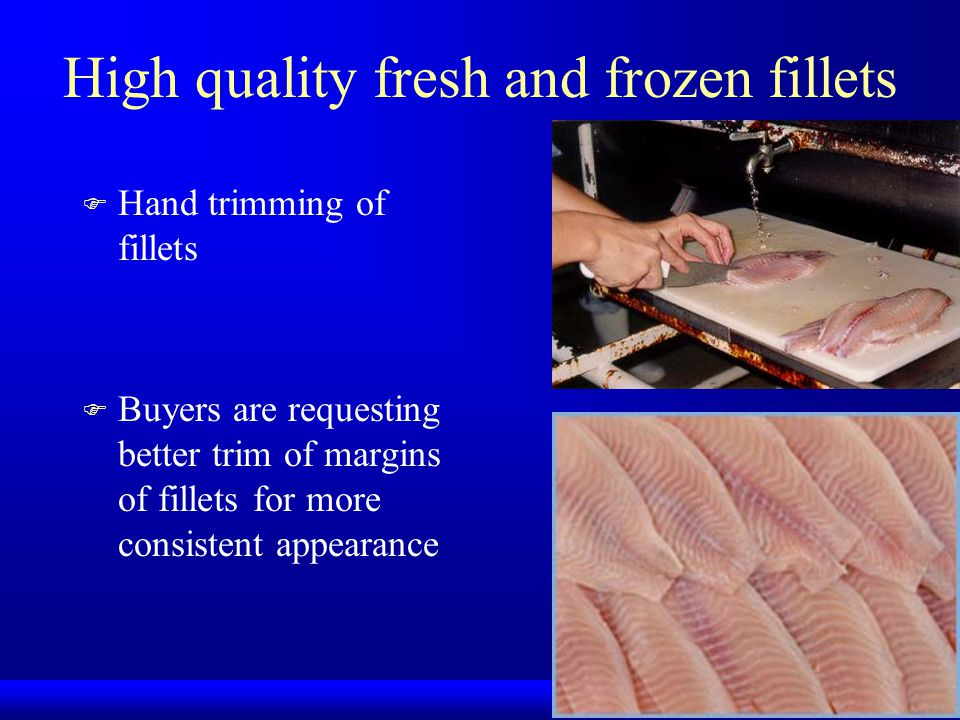 High quality fresh and frozen fillets