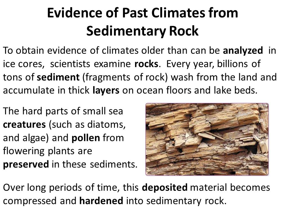 Evidence of Past Climates from Sedimentary Rock