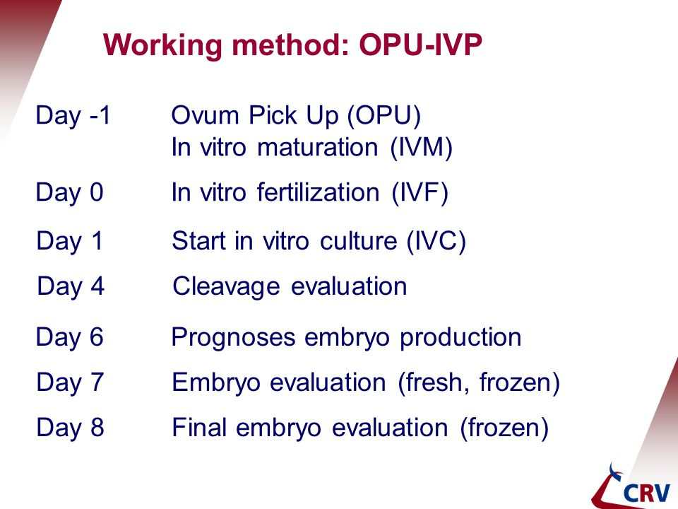 Working method: OPU-IVP