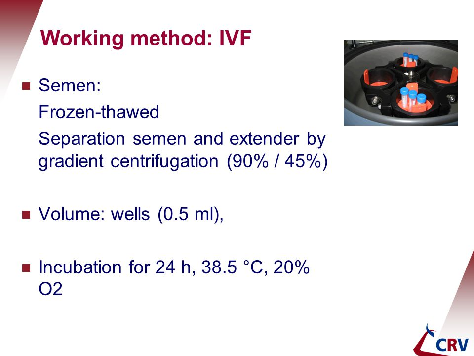 Working method: IVF Semen: Frozen-thawed