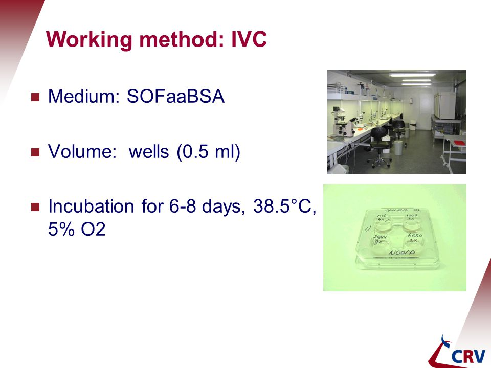 Working method: IVC Medium: SOFaaBSA Volume: wells (0.5 ml)