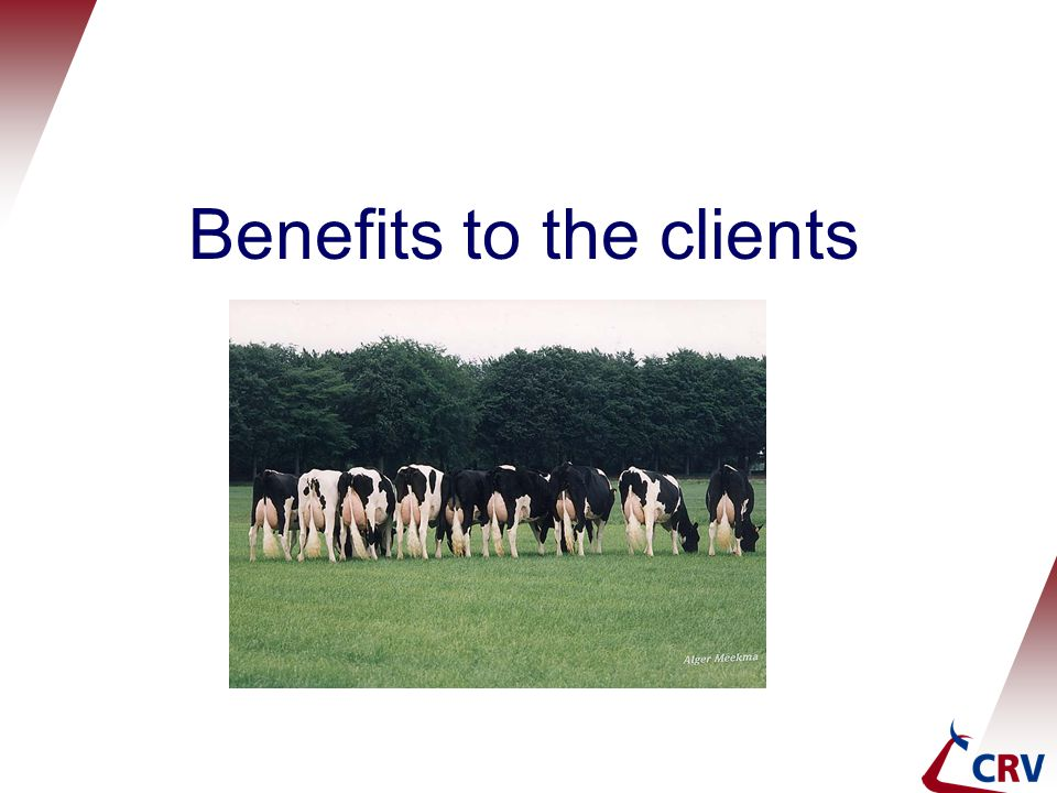 Benefits to the clients