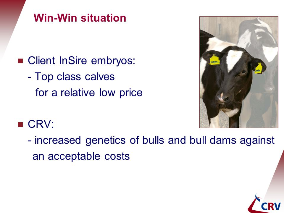 Win-Win situation Client InSire embryos: - Top class calves. for a relative low price. CRV: - increased genetics of bulls and bull dams against.