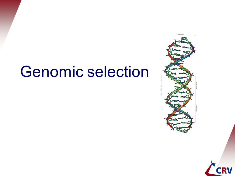 Genomic selection