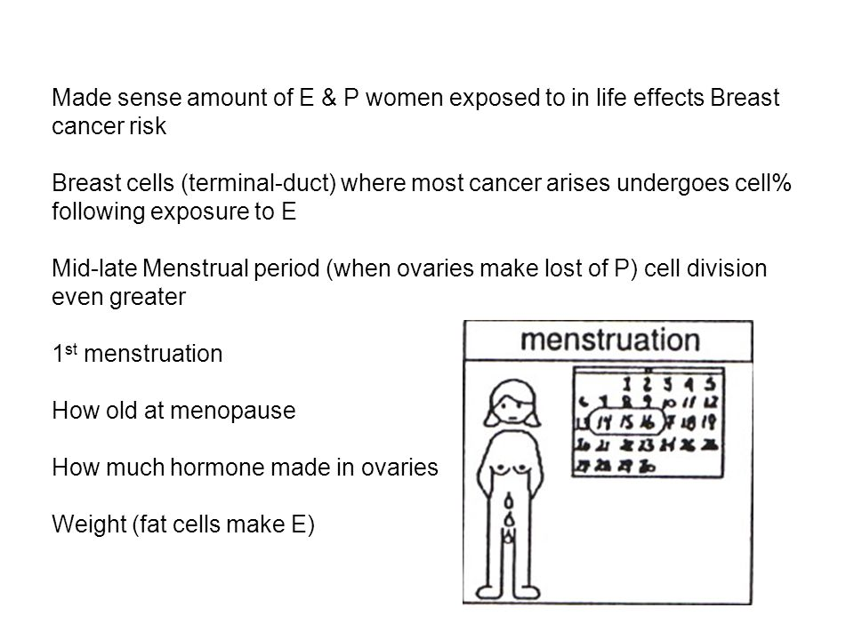 Made sense amount of E & P women exposed to in life effects Breast cancer risk