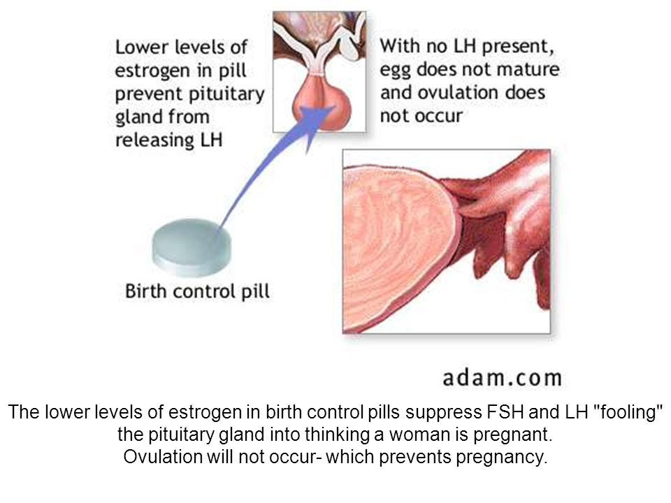 Ovulation will not occur- which prevents pregnancy.