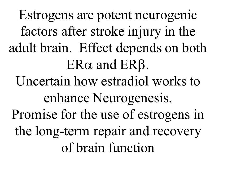 Uncertain how estradiol works to enhance Neurogenesis.