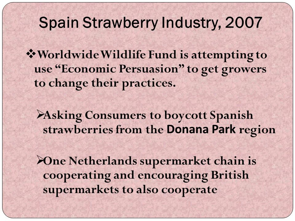 Spain Strawberry Industry, 2007
