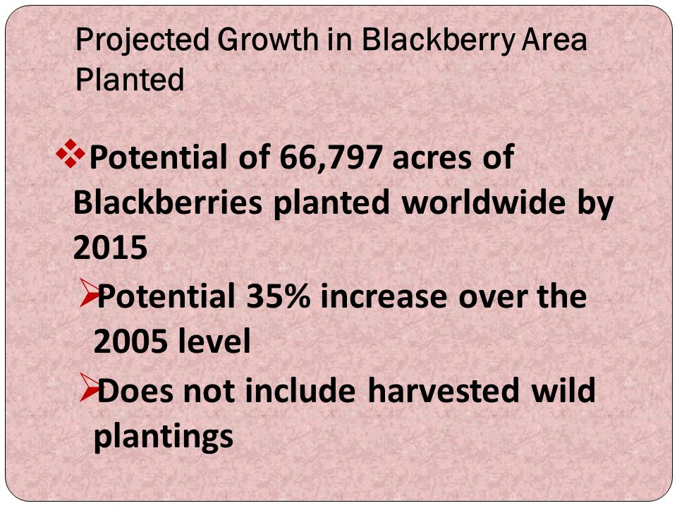 Projected Growth in Blackberry Area Planted