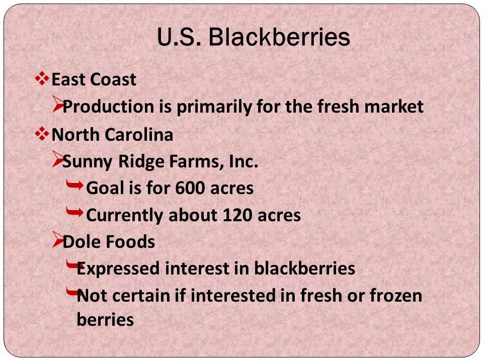 U.S. Blackberries East Coast