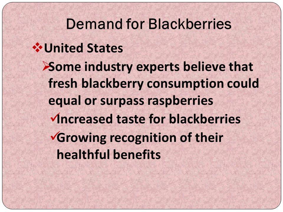 Demand for Blackberries