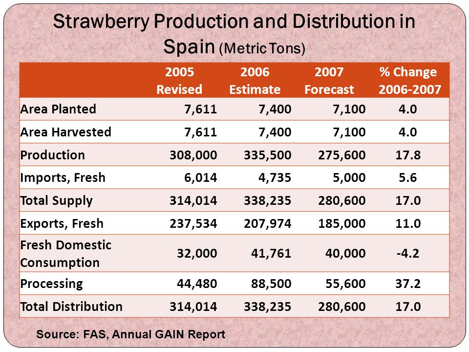 Strawberry Production and Distribution in Spain (Metric Tons)