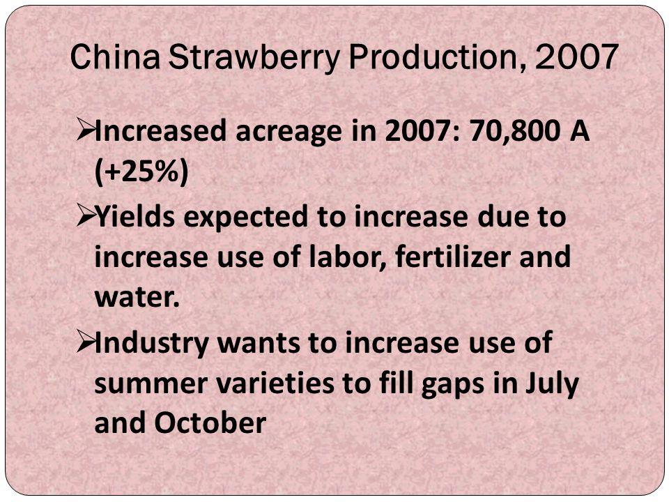 China Strawberry Production, 2007