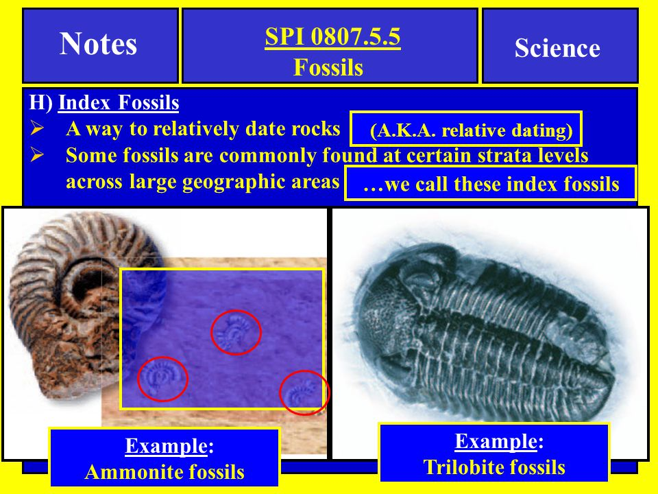 …we call these index fossils