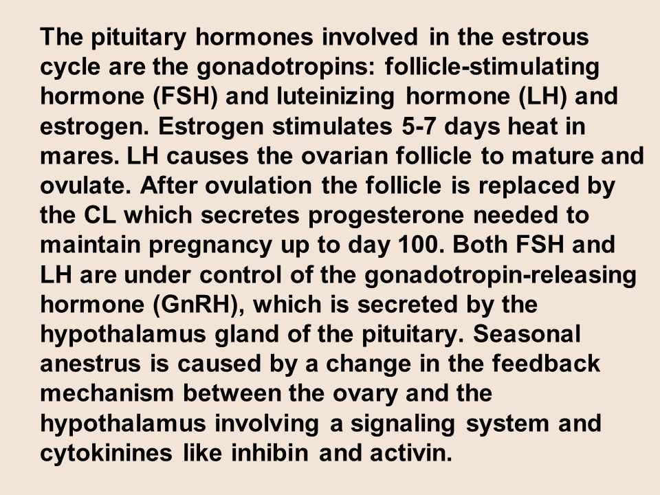 The pituitary hormones involved in the estrous cycle are the gonadotropins: follicle-stimulating hormone (FSH) and luteinizing hormone (LH) and estrogen.