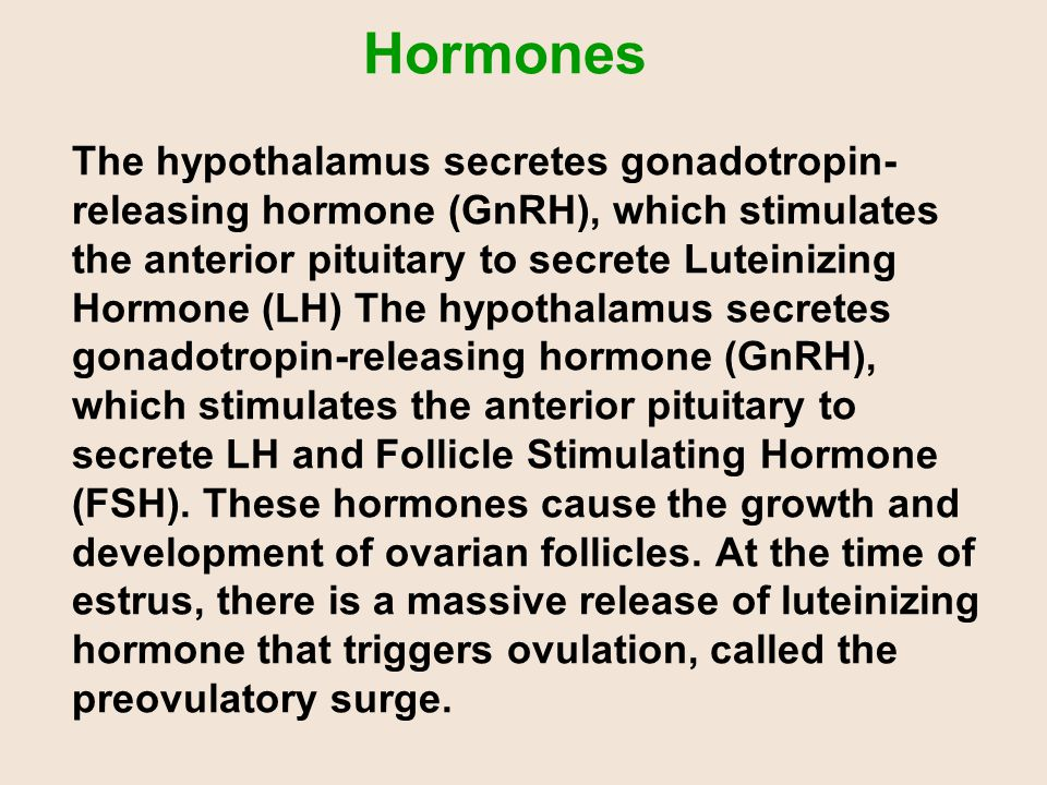 Hormones The hypothalamus secretes gonadotropin-releasing hormone (GnRH), which stimulates the anterior pituitary to secrete Luteinizing Hormone (LH) The hypothalamus secretes gonadotropin-releasing hormone (GnRH), which stimulates the anterior pituitary to secrete LH and Follicle Stimulating Hormone (FSH). These hormones cause the growth and development of ovarian follicles. At the time of estrus, there is a massive release of luteinizing hormone that triggers ovulation, called the preovulatory surge.