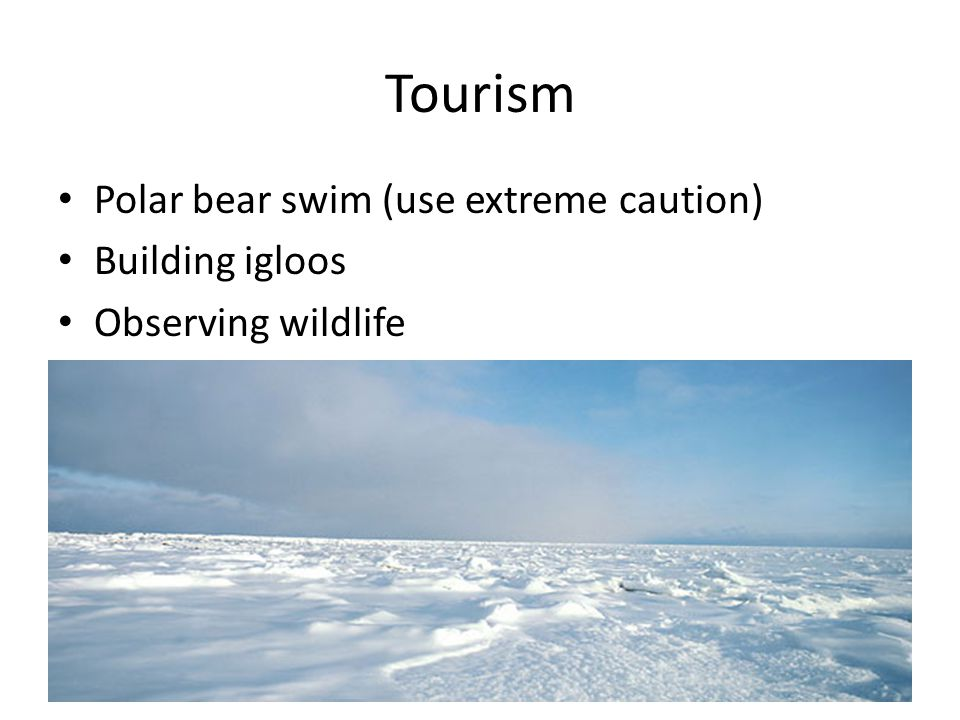 Tourism Polar bear swim (use extreme caution) Building igloos