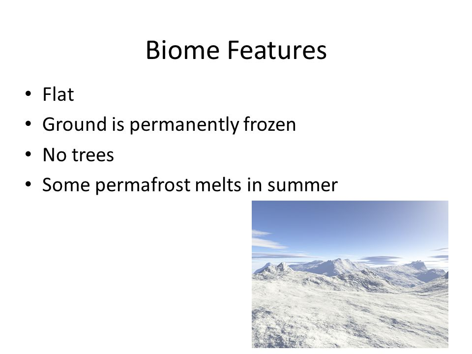 Biome Features Flat Ground is permanently frozen No trees