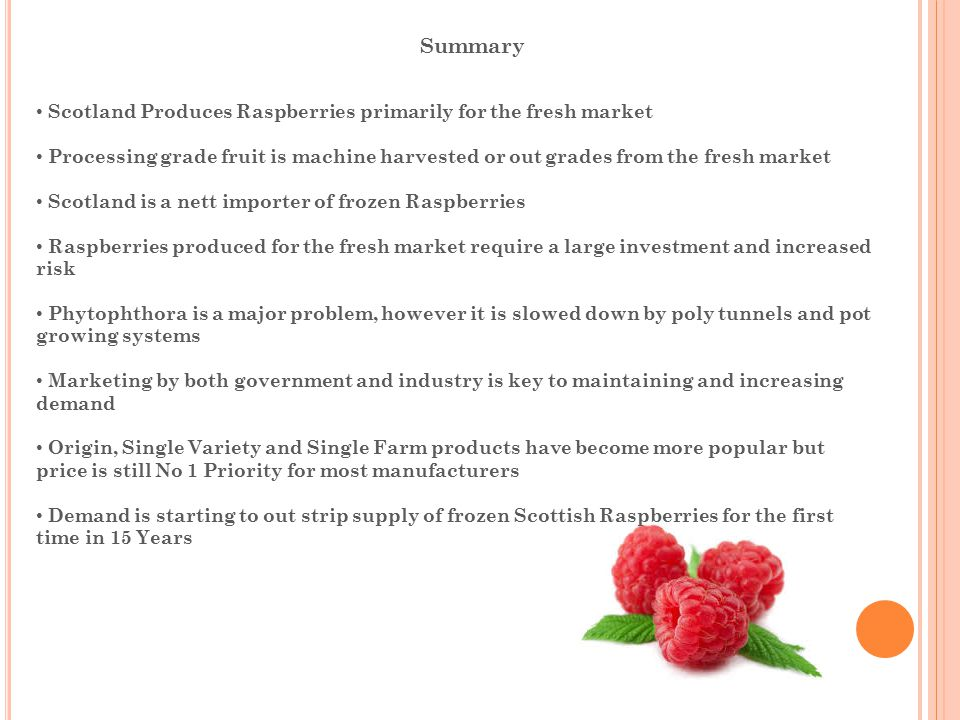 Summary Scotland Produces Raspberries primarily for the fresh market