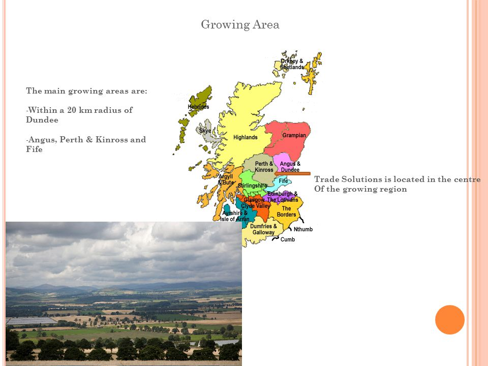 Growing Area The main growing areas are: