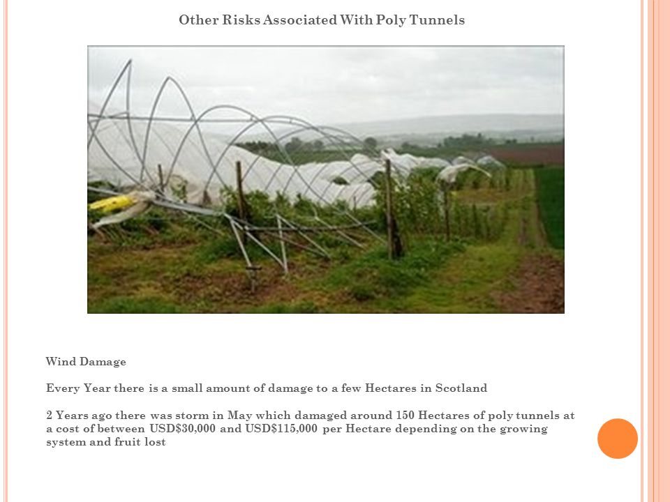 Other Risks Associated With Poly Tunnels