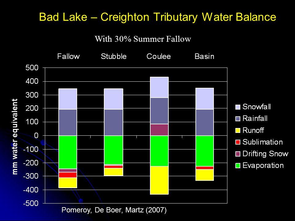Bad Lake – Creighton Tributary Water Balance
