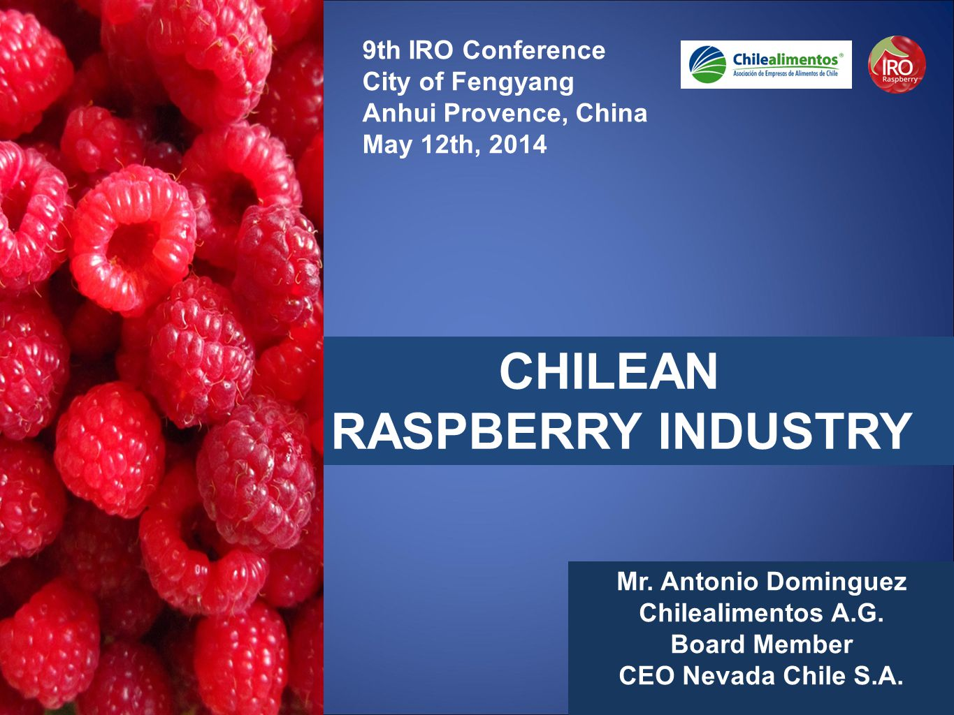 CHILEAN RASPBERRY INDUSTRY