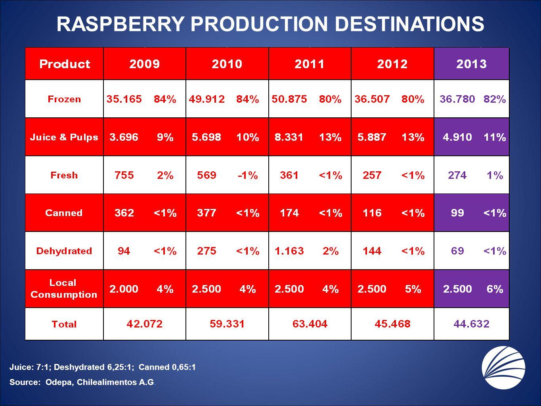 RASPBERRY PRODUCTION DESTINATIONS