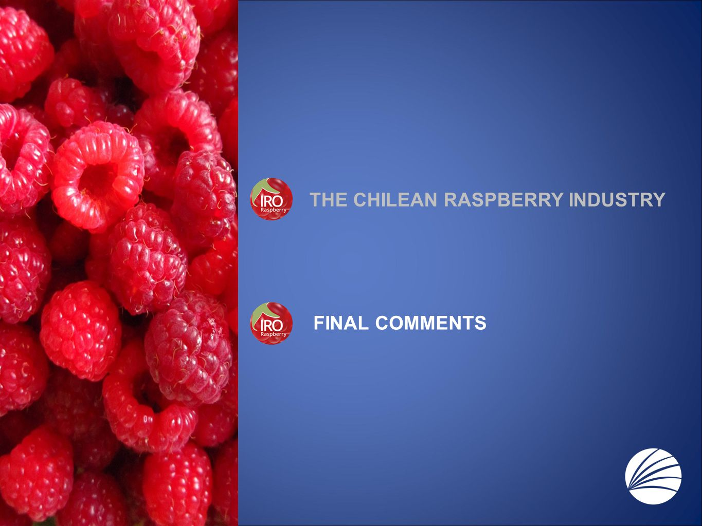 THE CHILEAN RASPBERRY INDUSTRY