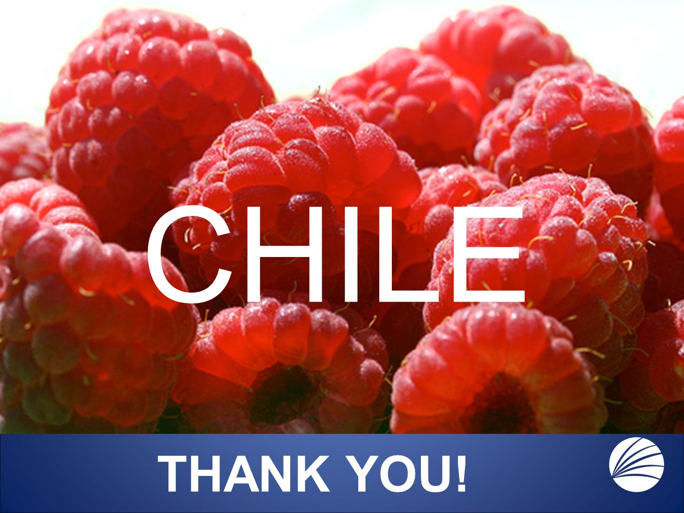 CHILE THANK YOU!