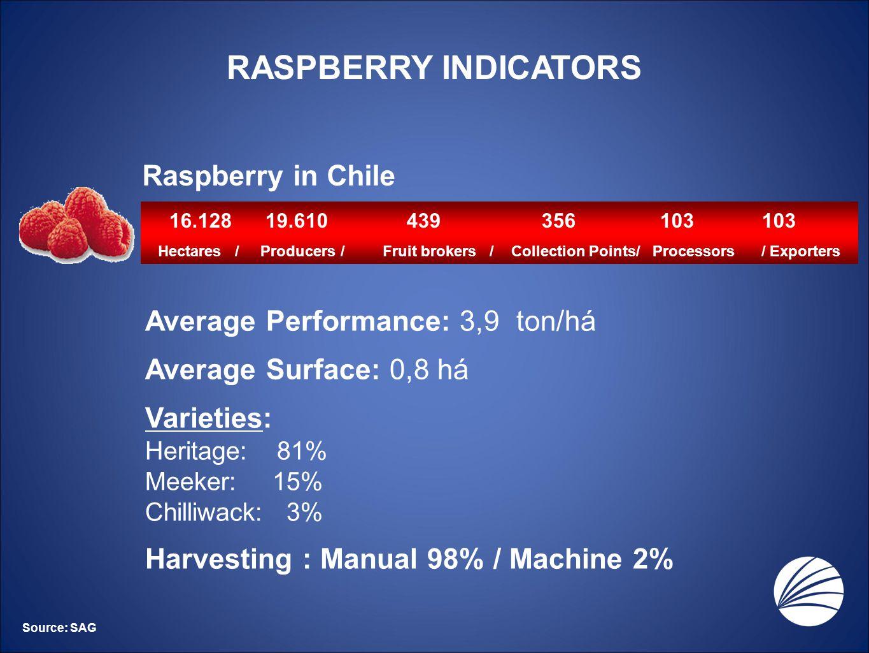 RASPBERRY INDICATORS Raspberry in Chile