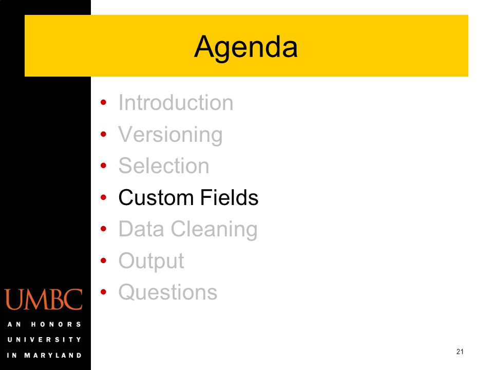 Agenda Introduction Versioning Selection Custom Fields Data Cleaning