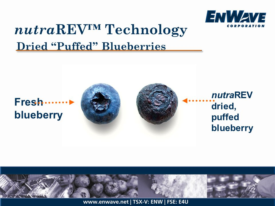 nutraREV™ Technology Dried Puffed Blueberries Fresh blueberry