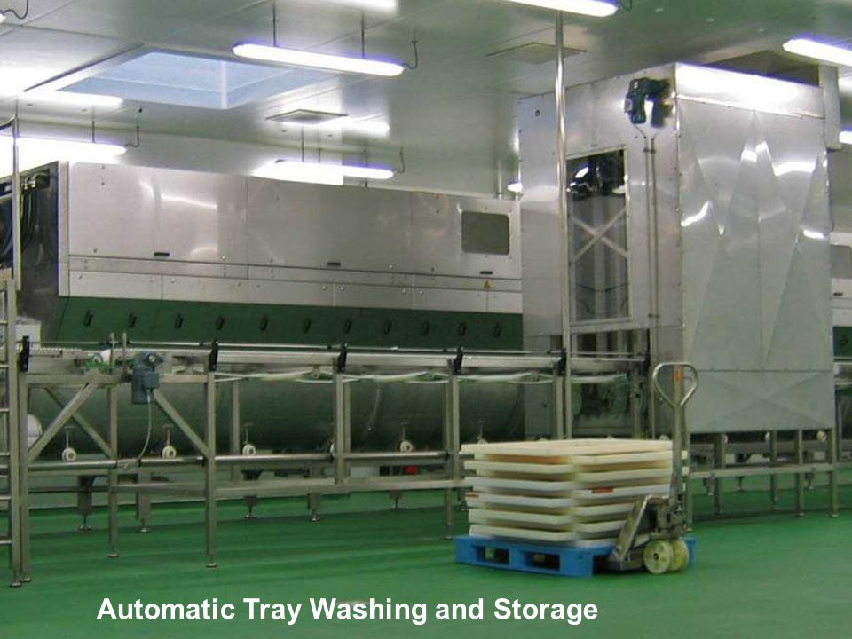 Automatic Tray Washing and Storage