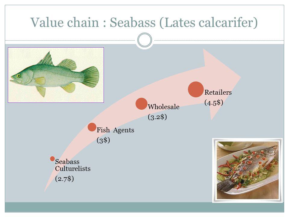 Value chain : Seabass (Lates calcarifer)