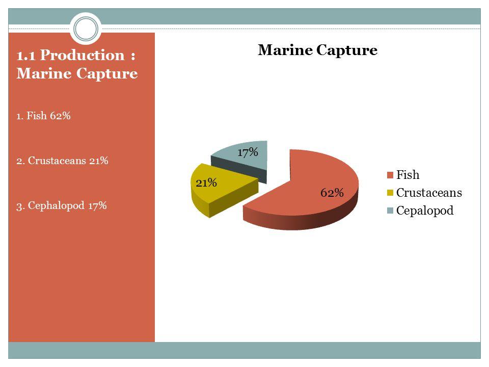 1.1 Production : Marine Capture