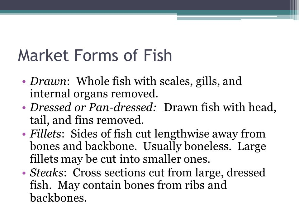 Market Forms of Fish Drawn: Whole fish with scales, gills, and internal organs removed.