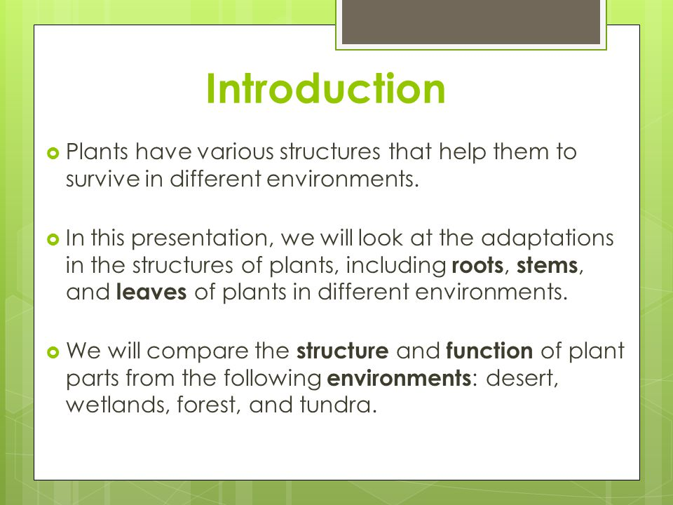 Introduction Plants have various structures that help them to survive in different environments.