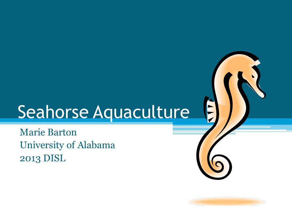 Marie Barton University of Alabama 2013 DISL