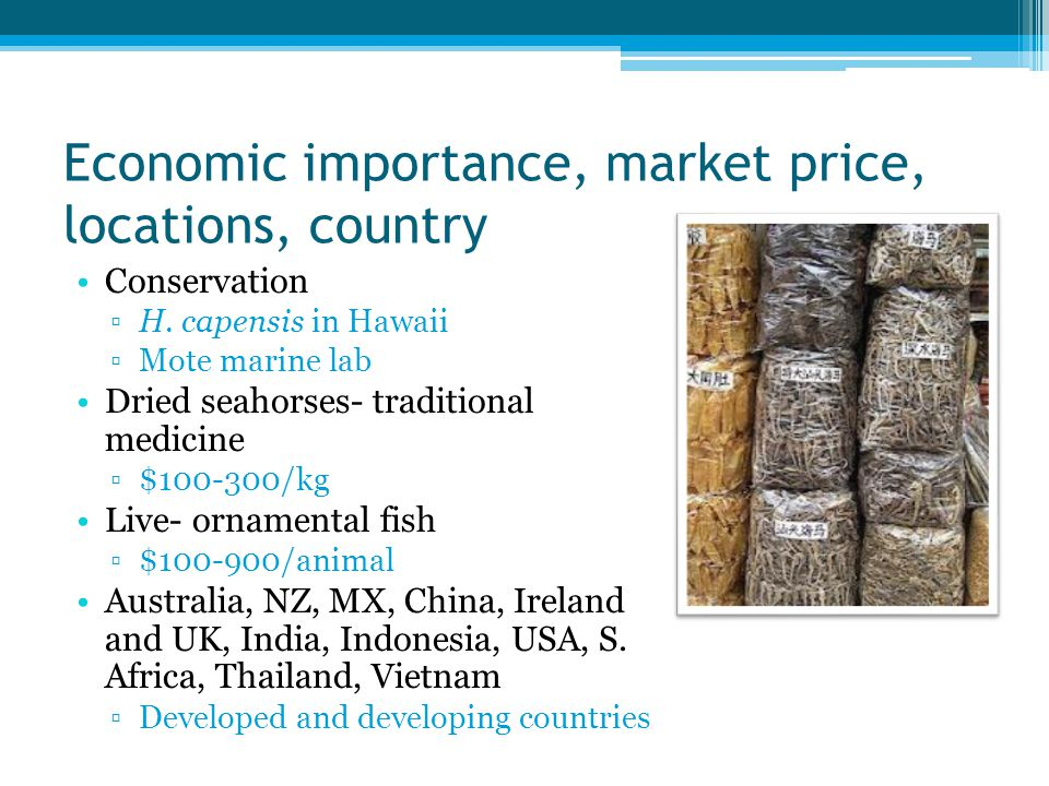 Economic importance, market price, locations, country