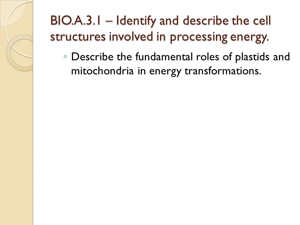 BIO.A.3.1 – Identify and describe the cell structures involved in processing energy.