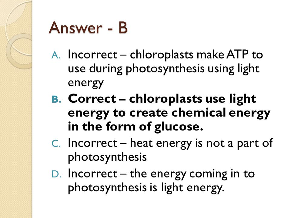 Answer - B Incorrect – chloroplasts make ATP to use during photosynthesis using light energy.