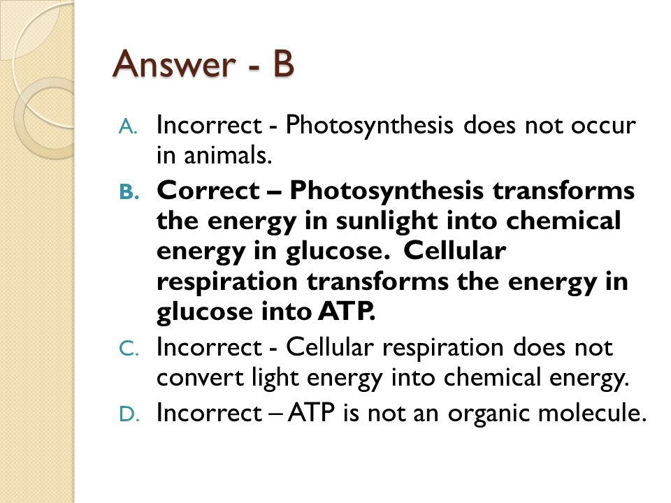Answer - B Incorrect - Photosynthesis does not occur in animals.