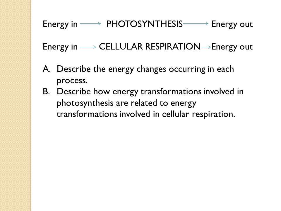 Energy in PHOTOSYNTHESIS Energy out