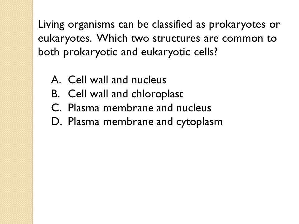 Living organisms can be classified as prokaryotes or eukaryotes