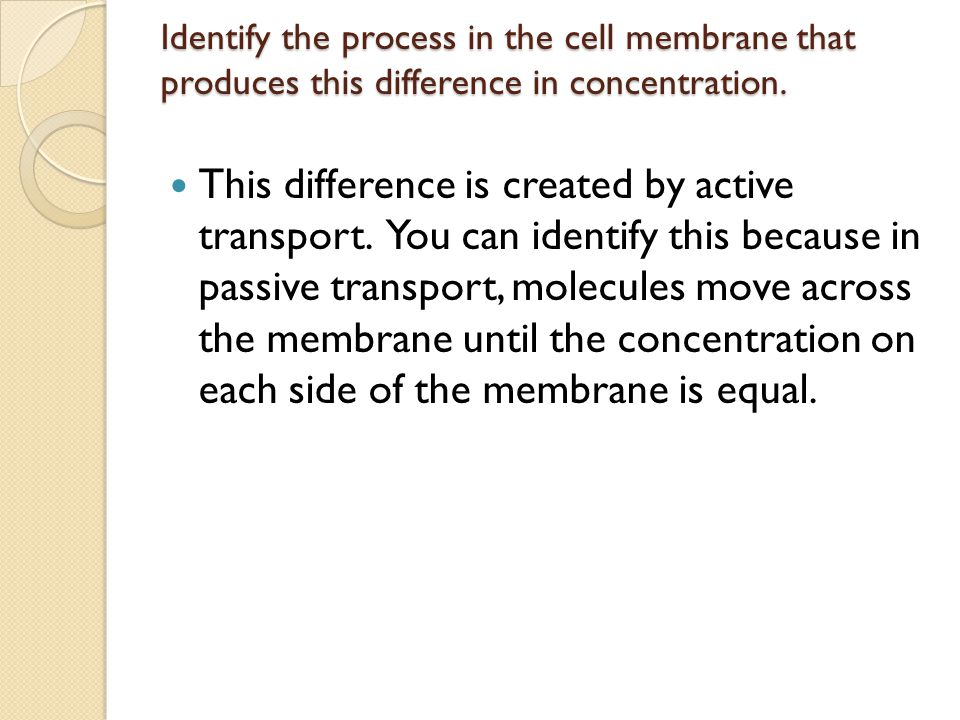 Identify the process in the cell membrane that produces this difference in concentration.