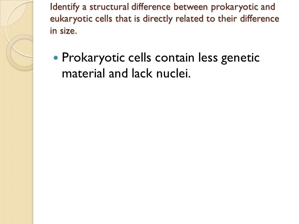 Prokaryotic cells contain less genetic material and lack nuclei.