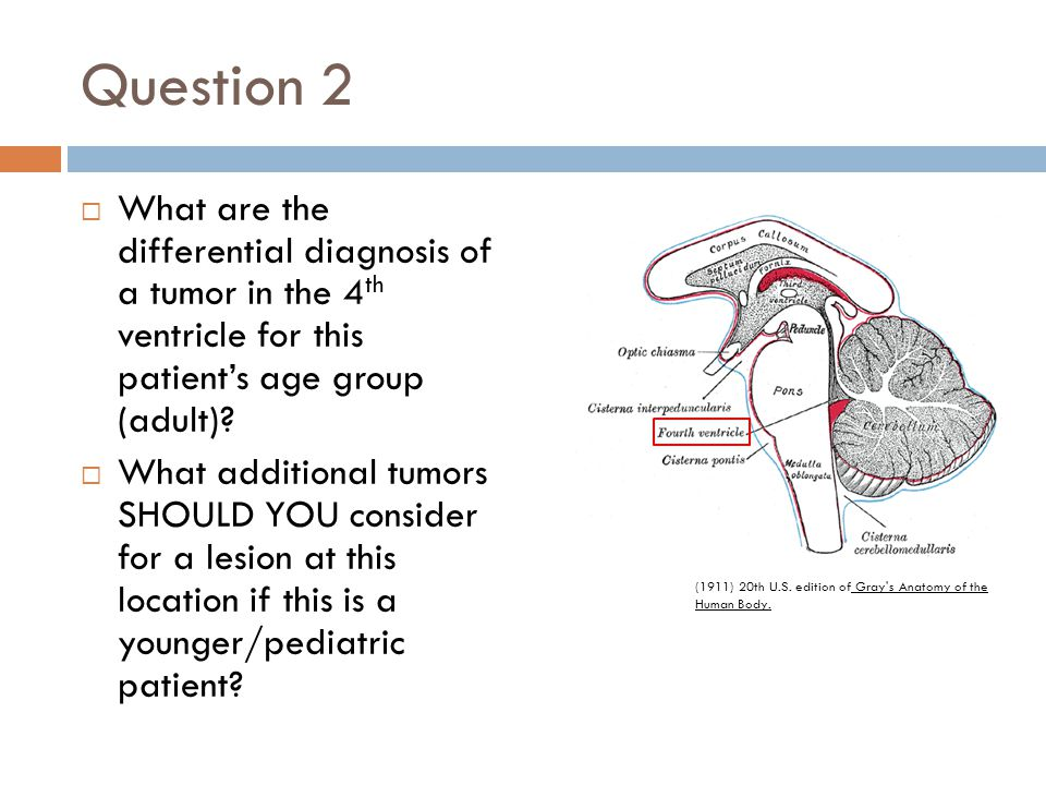 Question 2 What are the differential diagnosis of a tumor in the 4th ventricle for this patient's age group (adult)