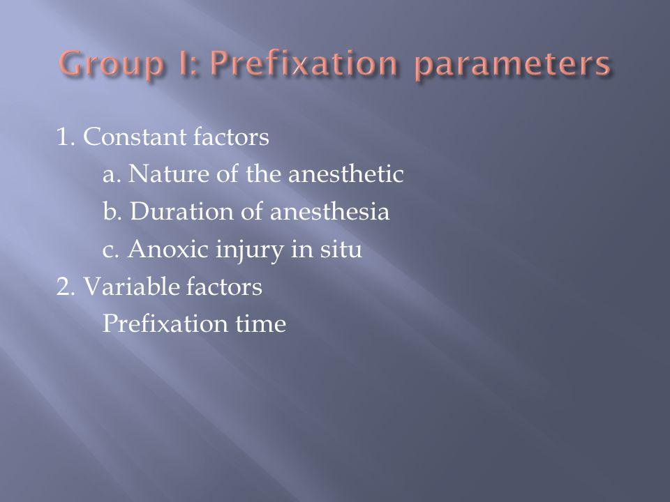 Group I: Prefixation parameters